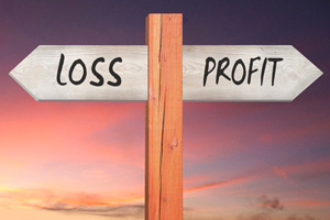 Profit and Loss forecasting Services